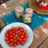 tomates-casita