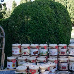 jardines-muller-en-niguelas-2